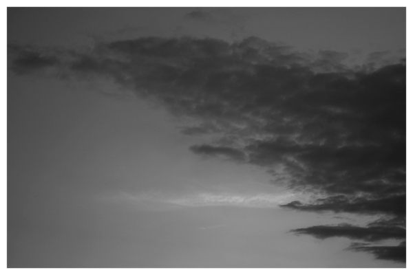 Stieglitz Dusk is coming - Jaime Scatena
